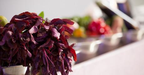 Culinaria2014_MAMMOLA_04